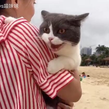 😋和阿霞姨姨一年后的再约😉漫步海边,听听海浪声,吹吹海风🙈黑哥,还顺便泡了个妞😂#宠物##宠爱的抱抱##喵妹见粉丝#
