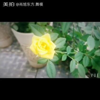 【肖旭东方.舞模美拍】06-02 12:39