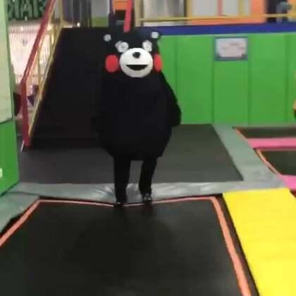 #熊本熊##卖萌#哈哈😂熊本熊跳蹦床结果摔倒了。