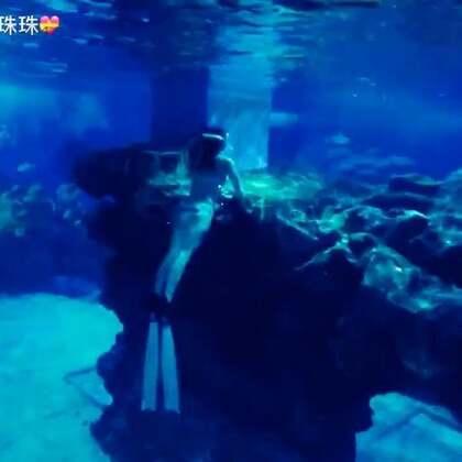 #自由潜水#我想要😍一种内在的体验,潜到海底和自己在一起,和鱼🐠在一起。放空大脑,倾听自己的心跳,放松身体,聆听海水🌊流过的声音。一条藏在沉船夹缝里的大海鳗吓死宝宝了👀#天津极地海洋馆##美人鱼##大海鳗##美拍##美拍小助手#