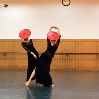 别具一格的傣族舞哦!谢谢大家的点赞关注!此舞献给你们😘😘😘#舞蹈##敏雅可乐##敏雅舞蹈#