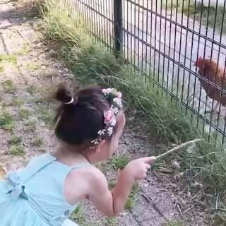 看看小动物们!😅😜