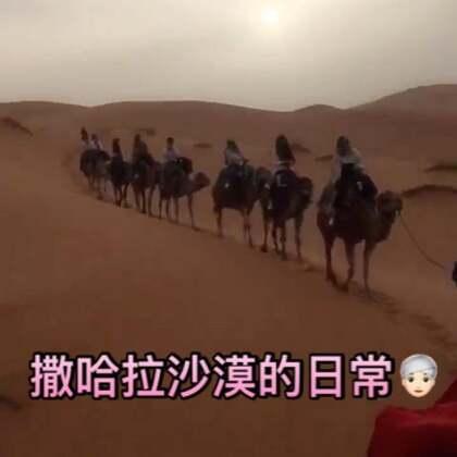 来来来,看p哥摩洛哥撒哈拉之旅~隔了半个月才发出来因为被我遗忘在了草稿箱里,嘿嘿🙈#撒哈拉沙漠#真的很震撼,手机拍不出来那种感觉,美!!真的美!!在这里所有烦心事都太渺小不值得被记起~那么出题了,我一共说了几个好酷啊~😂微博https://weibo.com/u/1974145444 #带着美拍去旅行##摩洛哥#