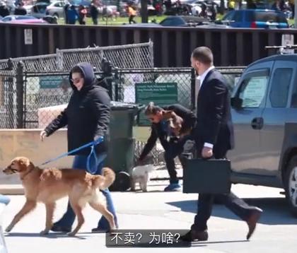 在街上出十万美元买别人家的狗,铲屎官会有啥反应? 一个哥们在芝加哥街头试了一下....