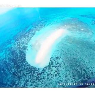 为了看大堡礁专门去了趟凯恩斯,素材极其的少,简单记录了下。#澳大利亚大堡礁##凯恩斯大堡礁##带着美拍去旅行#