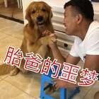 #宠物##搞笑#这梦做的😭😭😭