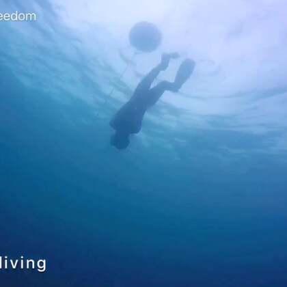 初级自由潜水员课程之毕业潜!——赵哥#自由潜水##潜水#