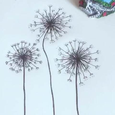 手绘蒲公英模仿 手绘客 柚子 手绘画 简笔画教 手工视频 西柚 的美拍