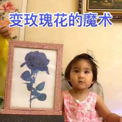 变出玫瑰花送大家。#宝宝##魔术#
