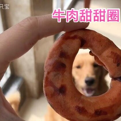 最近宝宝们爱玩儿这个牛肉垒球和牛肉麻花,小66咬不动垒球,每次都吃甜甜圈,还必须得回自己睡觉的大床上玩儿😂#宠物#@宠物频道官方账号 @美拍小助手 同款都在这里哦👉https://m.tb.cn/ZJCzGf
