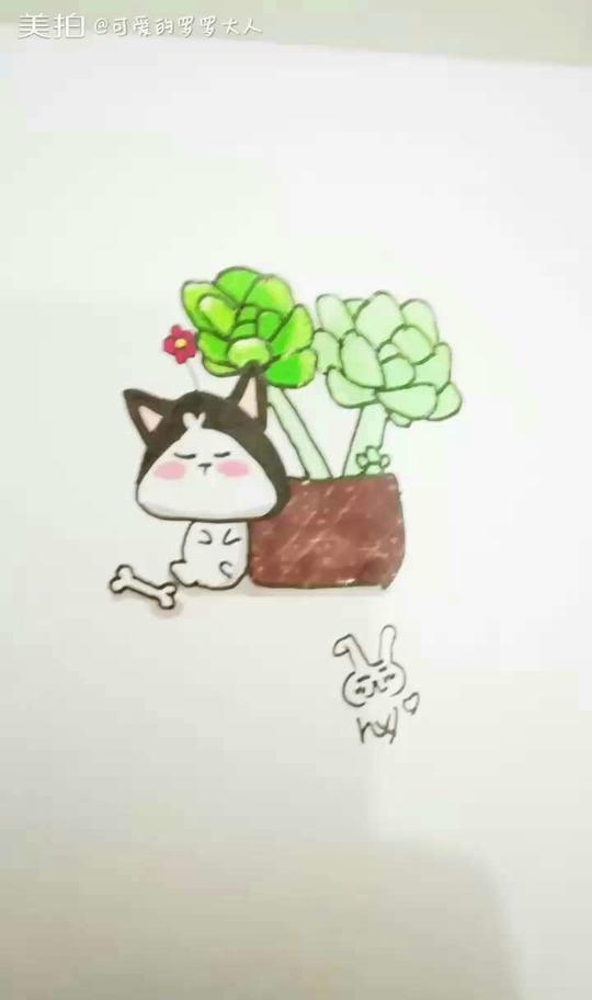 多肉植物##卡通简笔画##随手画画#笔芯