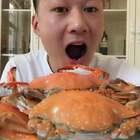 😍😍😍梭子蟹啃几个,有肉有黄,不吃白瞎了!这个季节也是梭子蟹产量最大的,好吃不贵!#吃秀##我要上热门@美拍小助手#这两天搞个蟹粥喝喝😜😜😜