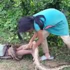 柬埔寨姐弟俩靠抓蛇为生,弟弟当诱饵引蛇出洞。有些国家生活真的不容易,看到这个,我们应该感谢这个国家给予我们良好的生存环境,不用担心一日三餐,哪怕平淡点,但是很安全😊😊😊感恩!!!#一千次暖心实验#