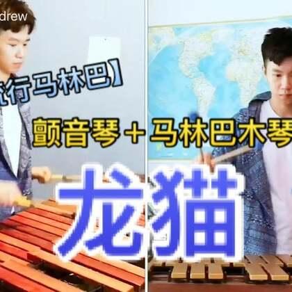 """【流行马林巴】龙猫-""""风之通道"""" #U乐国际娱乐##热门##久石让#"""