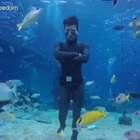 带你走进酷酷的自由潜世界!^_^#自由潜水#