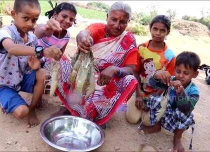 印度大婶抓来十几只大虾,看看她如何烹饪!这虾个头可真不小.