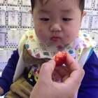 吃草莓的日常😜库存,前段时间生病了😭希望喜欢臣臣的亲们能一如既往的支持💖💖💖感谢#宝宝##我是小萌主##吃秀#