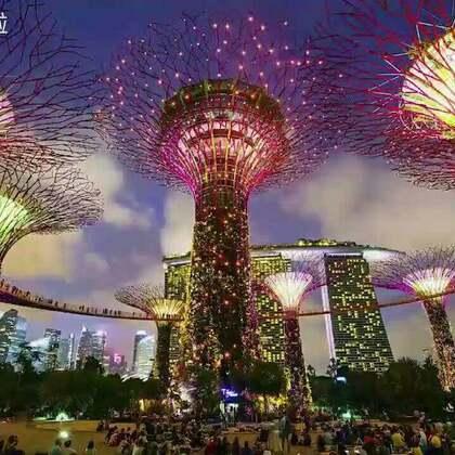 新加坡新地标--滨海湾公园,仅看照片有一种闯入阿凡达世界的错觉… @candy粉妞妞 @小吉利Jelly #hi走啦##带着美拍去旅行##我要上热门#