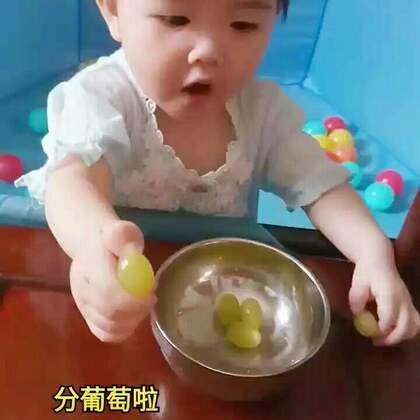 #宝宝##萌宝宝##小虾米成长纪#分葡萄啦!小虾米嘴巴里塞了一堆