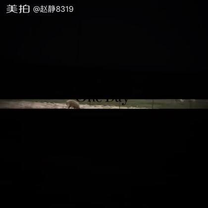 【赵静8319美拍】08-12 07:55
