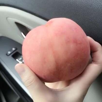 在车里面轻松搞定一个跟苹果一样的桃子😄 我的两个脚丫纸代替了固定架😂 #吃秀#@美拍小助手 最近几乎天天上午都是不吃饭一个桃子代替了