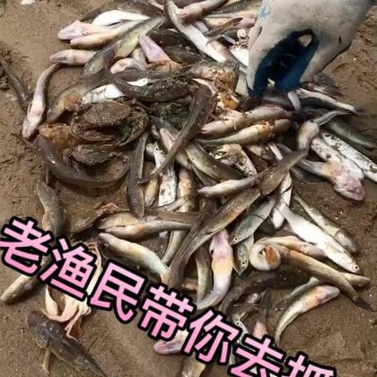 啥也不唠了,快给我累吐血了,就扣出来这几条鱼,晚上回家吃鱼咯,想吃咱家这边东北冷水系海鲜的伙伴们看这里👉http://shop.m.taobao.com/shop/shop_index.htm?user_id=37948246 #美食##赶海#