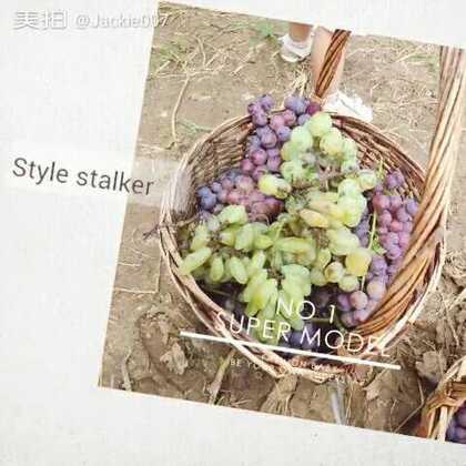 #生态园#采摘葡萄