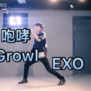 #EXO##咆哮growl##舞蹈#🔥🔥十二人EXO最喜欢的一首歌!❤️~前两天看着Lay的动作扒了下~😭但还跳不出老张那么撩人的感觉🌸不会白白也会继续努力努力再努力X😠EXO-L用你们可爱的手指点点赞好吗❤️ 🔥转 赞 评🔥 谢谢大家啦❤️