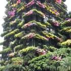 #特效#让这个绿色的建筑开满花吧,花开富贵😎😎😎
