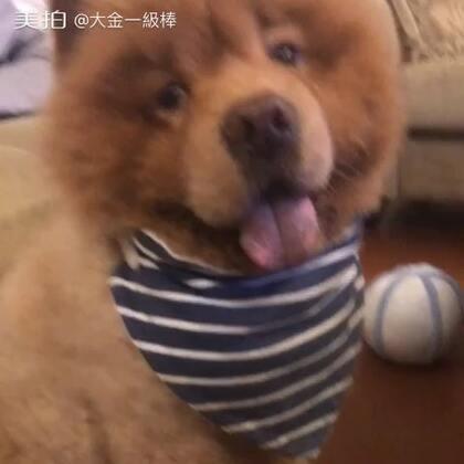 【大金一級棒美拍】17-08-23 03:28