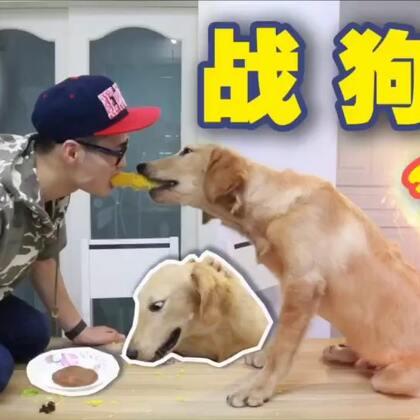 战狗3 @super动次(点赞转发加评论,并分享视频到朋友圈,抽出四个朋友,每人50元红包) #热门##搞笑##宠物#