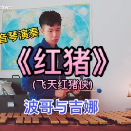 【流行马林巴】颤音琴演奏《红猪(飞天红猪侠)》- 波哥与吉娜 #U乐国际娱乐##马林巴木琴##宫崎骏#