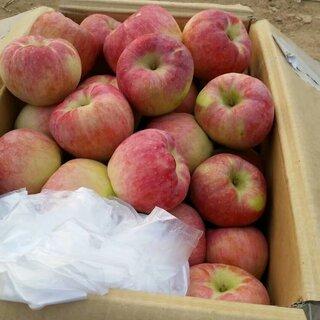 自己家种的#苹果#,有需要的来#甜甜的,超好吃#