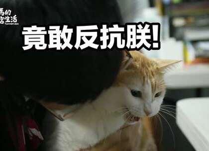 阿瑪:「哼⋯⋯要讓朕笑沒那麼簡單!」 2018瑪瑪年度桌曆 限時預購倒數四天 https://www.weibo.com/5594103312/FliQmvksH?from=page_1005055594103312_profile&wvr=6&mod=weibotime