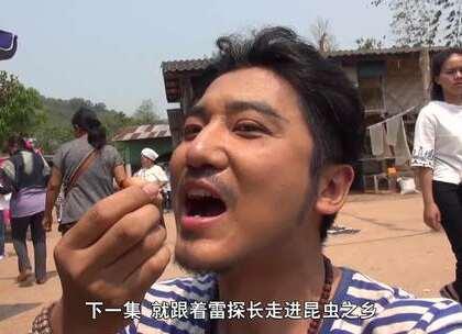 雷探长结束了泰国的全部旅程,开启新的冒险之旅——缅甸昆虫之乡,来一场真正意义上的生吞活剥。#我要上热门##旅游##探险#