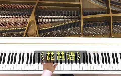 【悠悠琴韵美拍】#音乐#《琵琶语》,一直以来我都...
