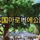 #金东硕的日常# 在韩国마로니에公园三个朋友来到这用中文玩玩 听说东硕带来了他自己做的饭 来来看看👍#手工##吃秀##搞笑##韩国##韩国行#