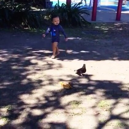 #宝宝#追鸽子🐦😬