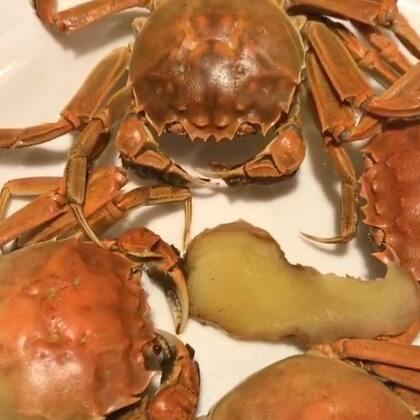 清蒸大闸蟹,宝贝们你们发财的小手手给点亮爱心爸吧 ❤️么么哒#美食##家常菜#@美拍小助手
