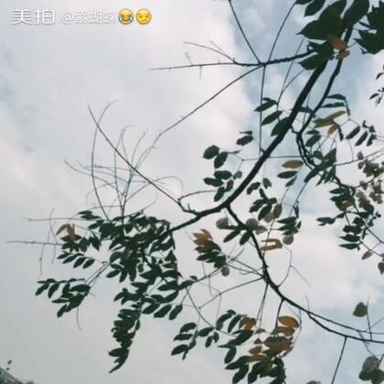 【扬哥小财神😂😏美拍】17-09-29 14:10