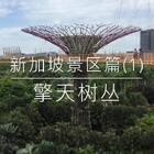 #旅游##带着美拍去旅游##日志#今天要带朋友们去看看新加坡的擎天树丛。希望朋友们喜欢。如果有机会来到新加坡,一定要到此一游哦😃