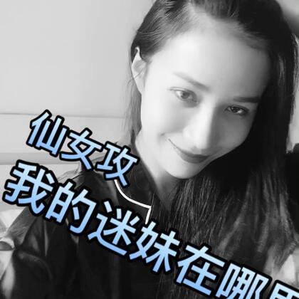 #宠物变装大赛##耍帅时刻##亚洲天使爱瑞丽#仙女攻……我的迷妹在哪里😘😘😘😘