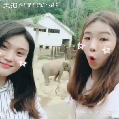 动物园一日游
