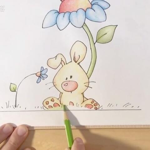 简笔画 一只兔子离不开一朵花 彩铅上色 随意线条http 桃子部落的美拍
