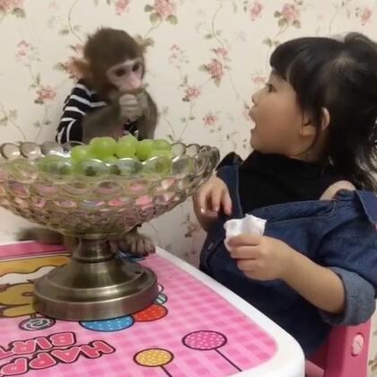 安安是一点五音都没有啊说唱歌手哈哈哈哈#宝宝##宠物#@美拍小助手