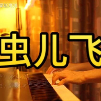 (虫儿飞)夜色钢琴曲 赵海洋演奏版 微博:夜色钢琴赵海洋 公众号:夜色钢琴曲