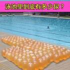 泳池里有多少尿?