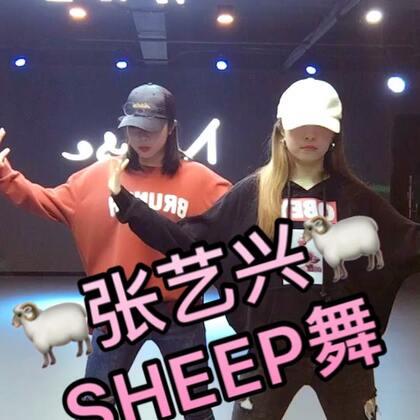 小绵羊的舞必须跳起来😎谁让他是我最爱的小男神❤跟我家毛毛宝贝sheep一下@啾啾毛毛 #美拍有戏##张艺兴sheep舞##张艺兴#