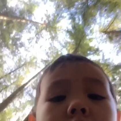 封面是Ethan拿着我的手机拍的 幼儿园都是好高好高的大树#幼儿园##热门##Ethan37个月#送完Ethan我去了健身 连续去了两天 明天休息😎