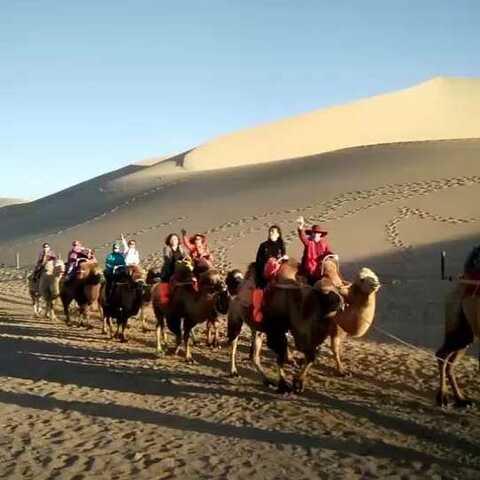 【1001户外旅行网美拍】西北全景8:鸣沙山骑骆驼看月牙...